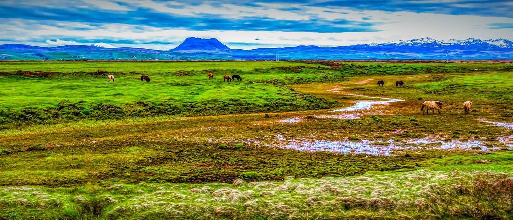 冰岛风采,自然魅力_图1-6