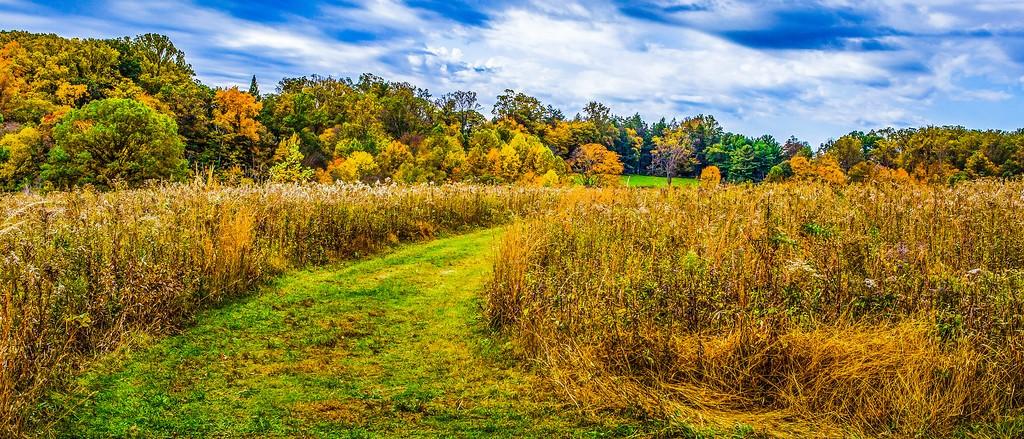 宾州长木公园,秋色浪漫_图1-36