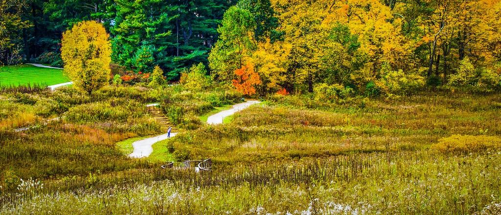 宾州长木公园,秋色浪漫_图1-20