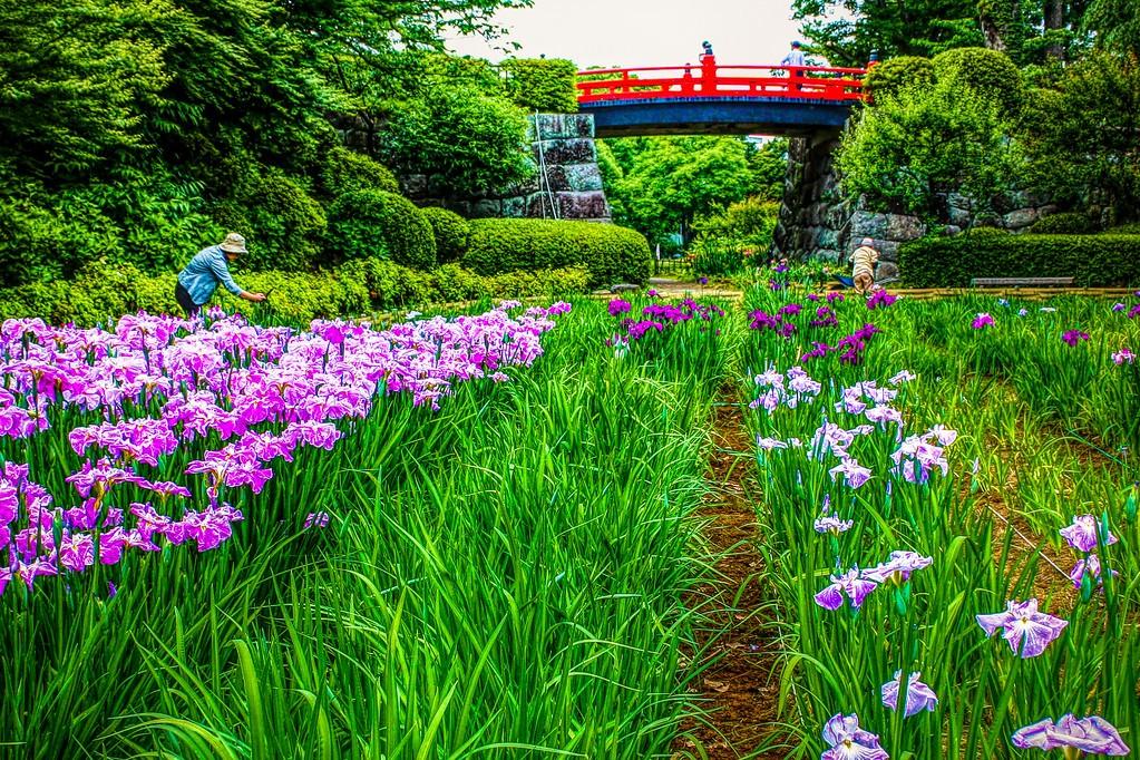 日本印象,刷新记忆_图1-16