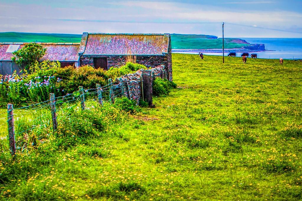 苏格兰奥克尼岛(Orkney Islands),沿路风景_图1-3