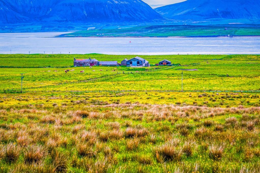 苏格兰奥克尼岛(Orkney Islands),沿路风景_图1-7