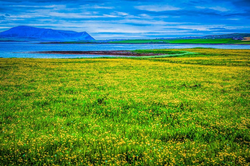 苏格兰奥克尼岛(Orkney Islands),沿路风景_图1-8