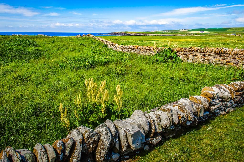 苏格兰奥克尼岛(Orkney Islands),沿路风景_图1-20