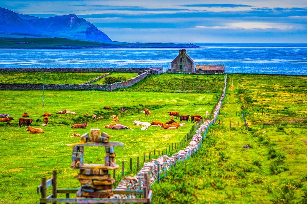 苏格兰奥克尼岛(Orkney Islands),沿路风景_图1-18