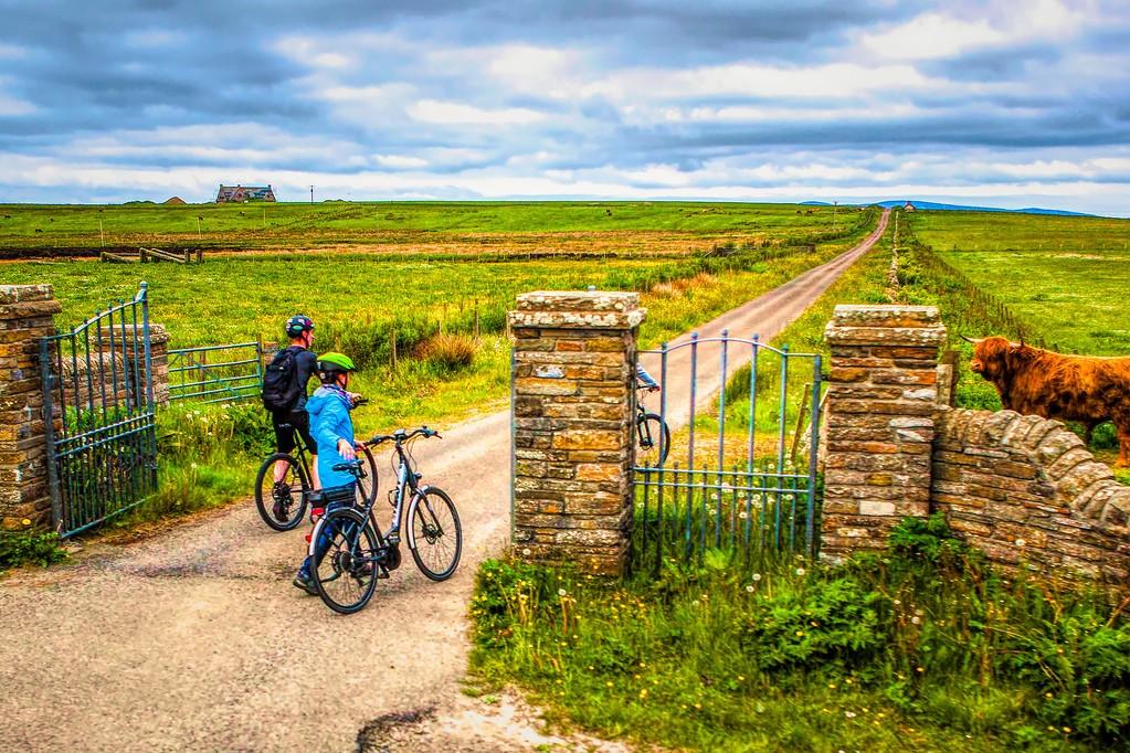 苏格兰奥克尼岛(Orkney Islands),沿路风景_图1-17