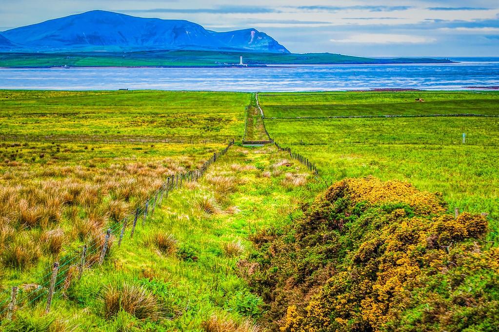 苏格兰奥克尼岛(Orkney Islands),沿路风景_图1-21