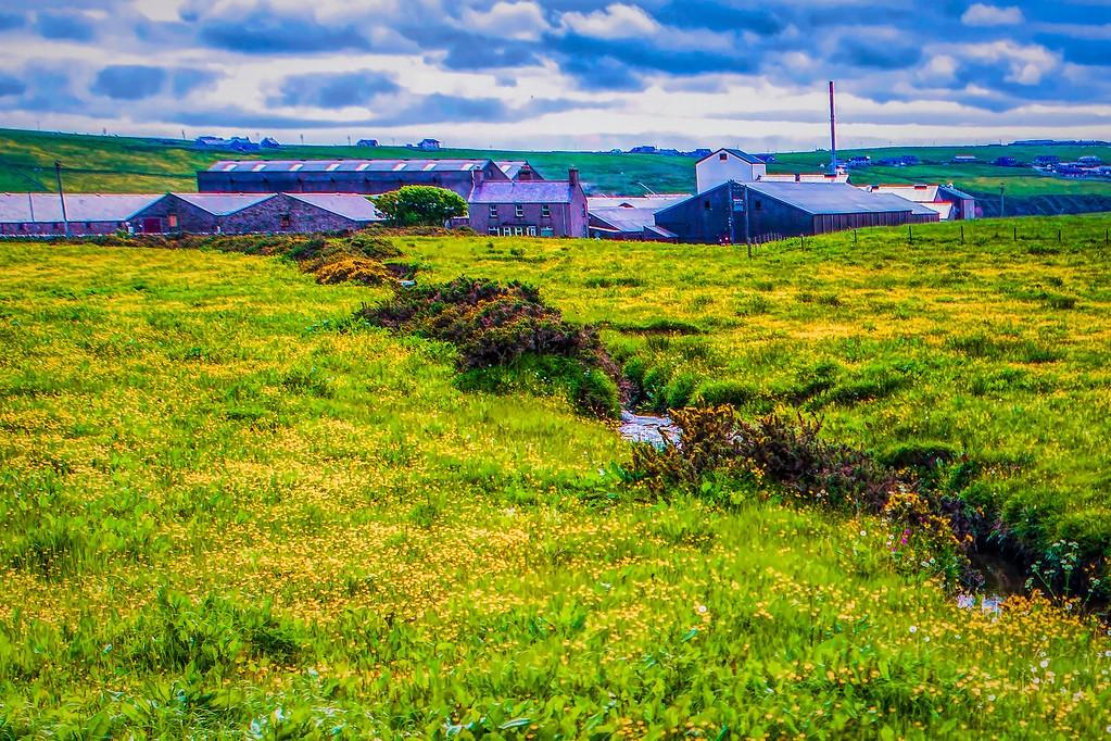 苏格兰奥克尼岛(Orkney Islands),沿路风景_图1-22