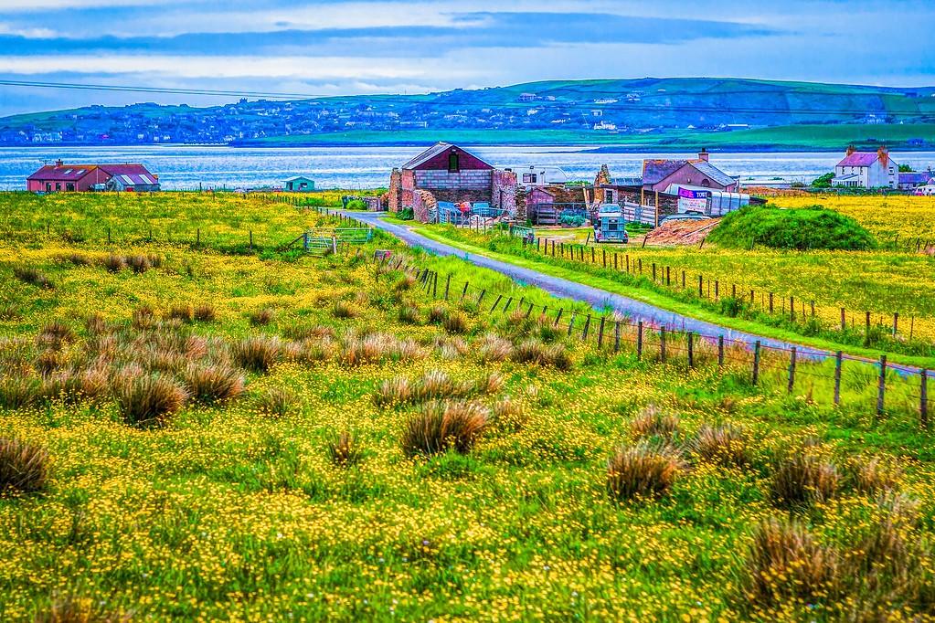 苏格兰奥克尼岛(Orkney Islands),沿路风景_图1-27
