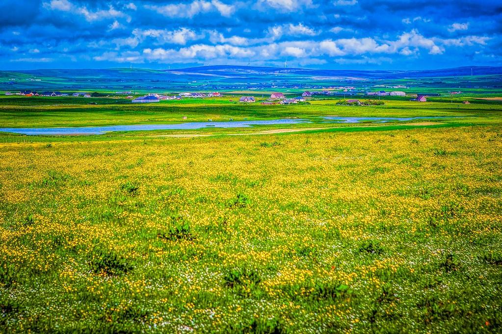 苏格兰奥克尼岛(Orkney Islands),沿路风景_图1-30