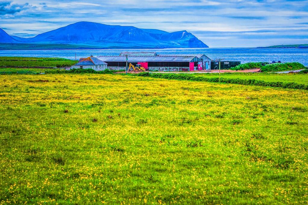 苏格兰奥克尼岛(Orkney Islands),沿路风景_图1-34