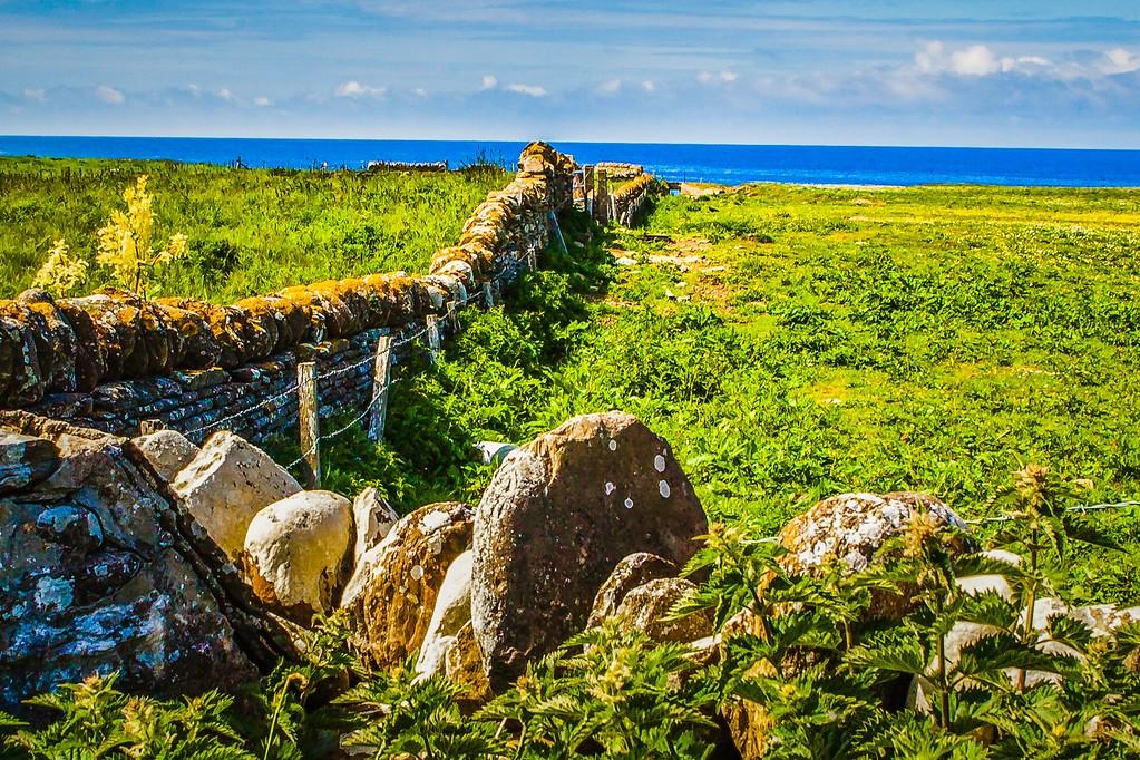 苏格兰奥克尼岛(Orkney Islands),沿路风景_图1-31