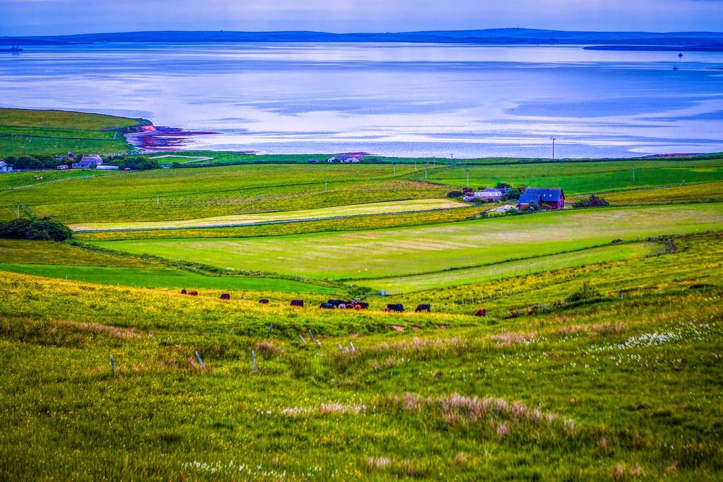 苏格兰奥克尼岛(Orkney Islands),沿路风景_图1-38