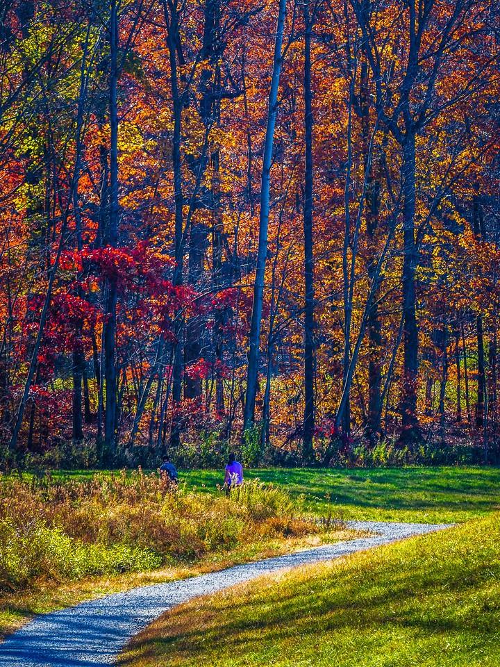 宾州 French Creek State Park,秋影秋色_图1-5