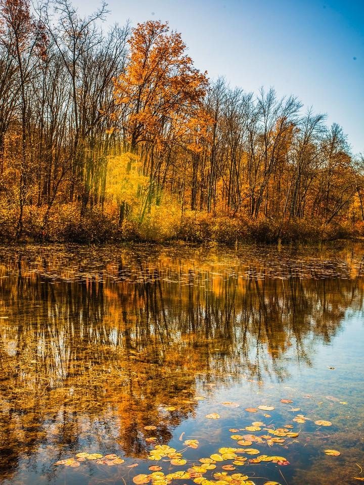 宾州 French Creek State Park,秋影秋色_图1-2