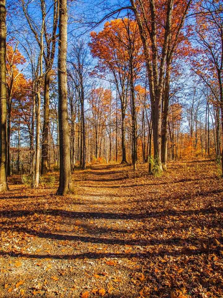 宾州 French Creek State Park,秋影秋色_图1-10