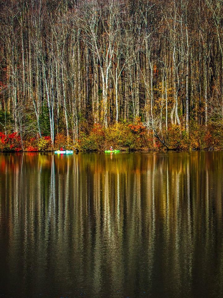 宾州 French Creek State Park,秋影秋色_图1-9