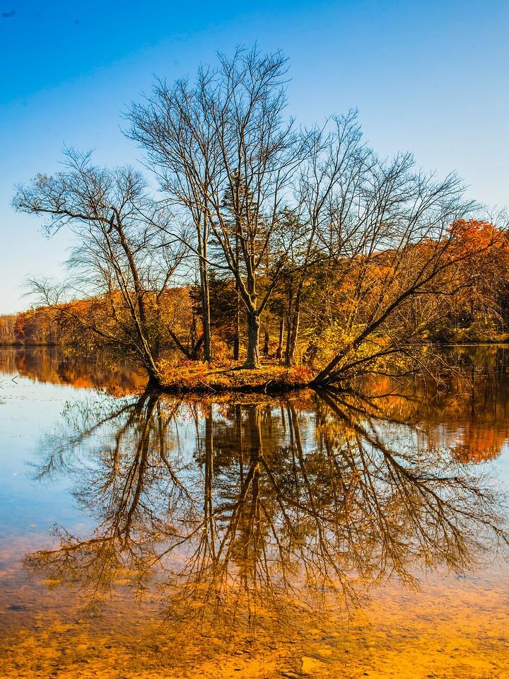 宾州 French Creek State Park,秋影秋色_图1-14