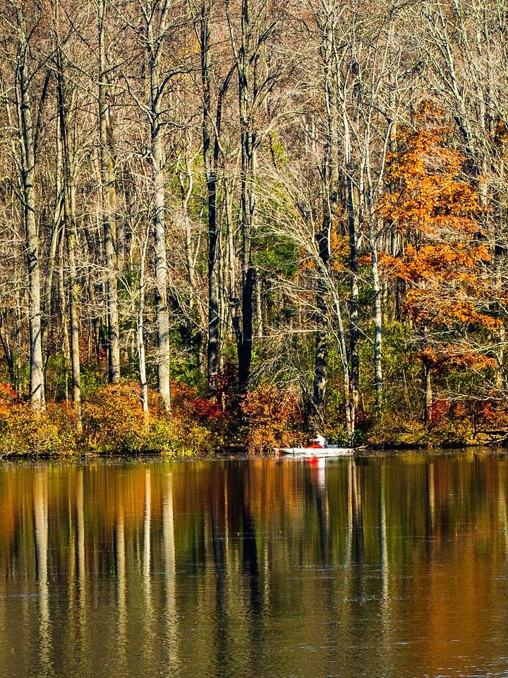 宾州 French Creek State Park,秋影秋色_图1-15