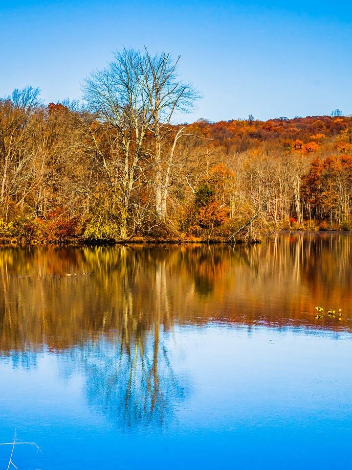 宾州 French Creek State Park,秋影秋色_图1-16