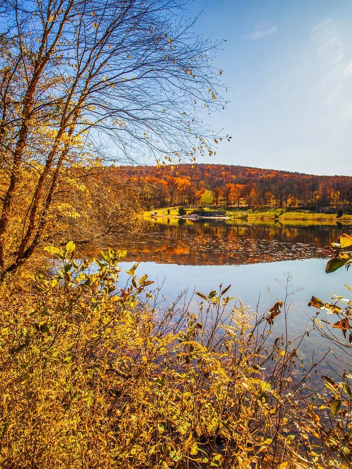 宾州 French Creek State Park,秋影秋色_图1-19