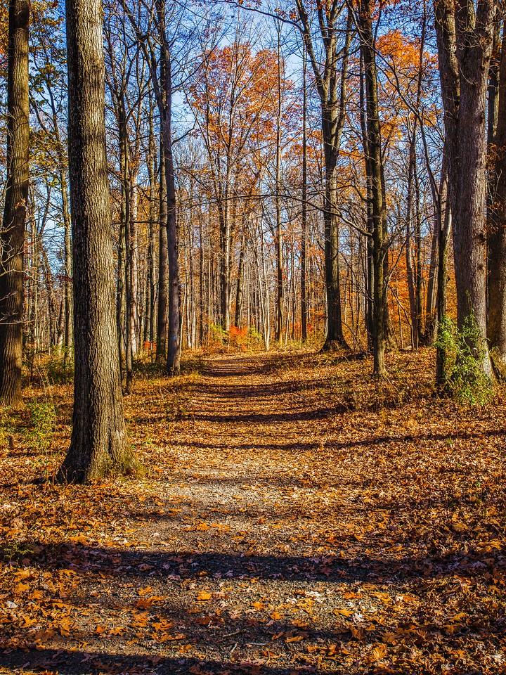 宾州 French Creek State Park,秋影秋色_图1-22