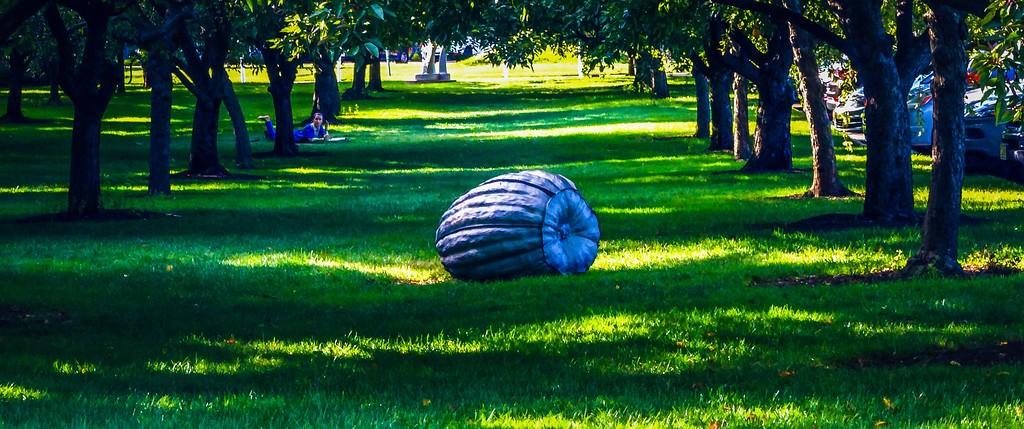 新泽西州雕塑公园(Grounds for scuplture),无声对话_图1-21