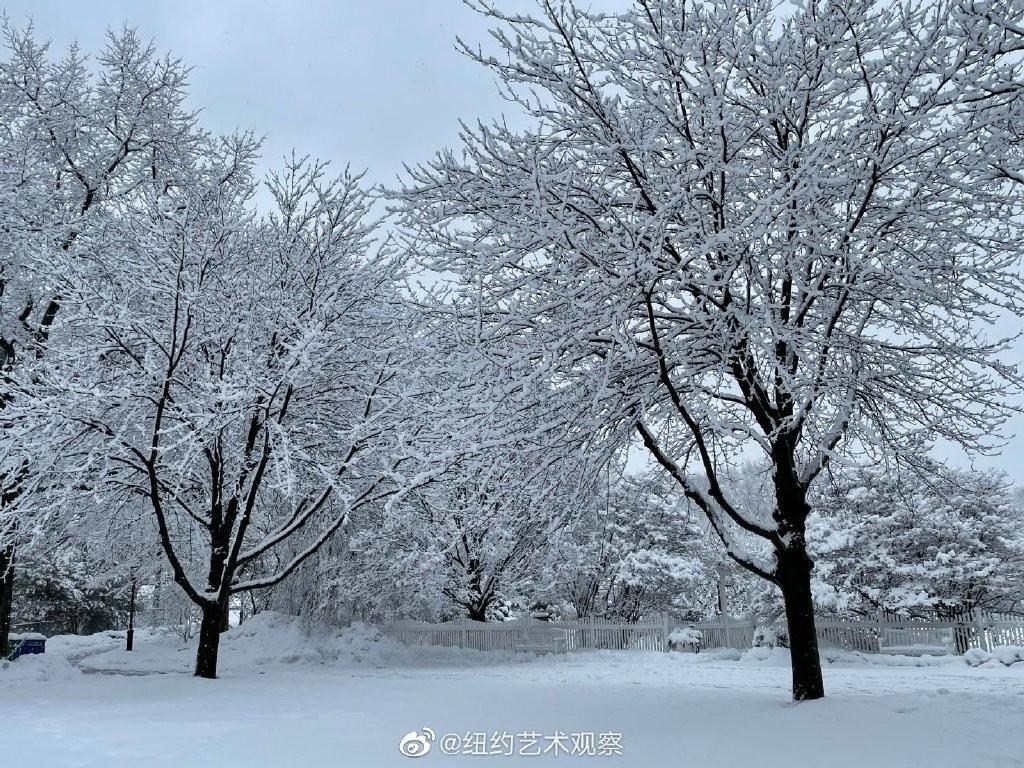 纽约法拉盛,千树万树雪花开_图1-6