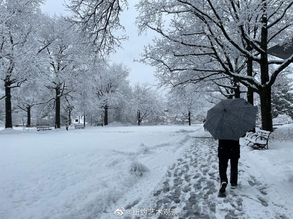 纽约法拉盛,千树万树雪花开_图1-9
