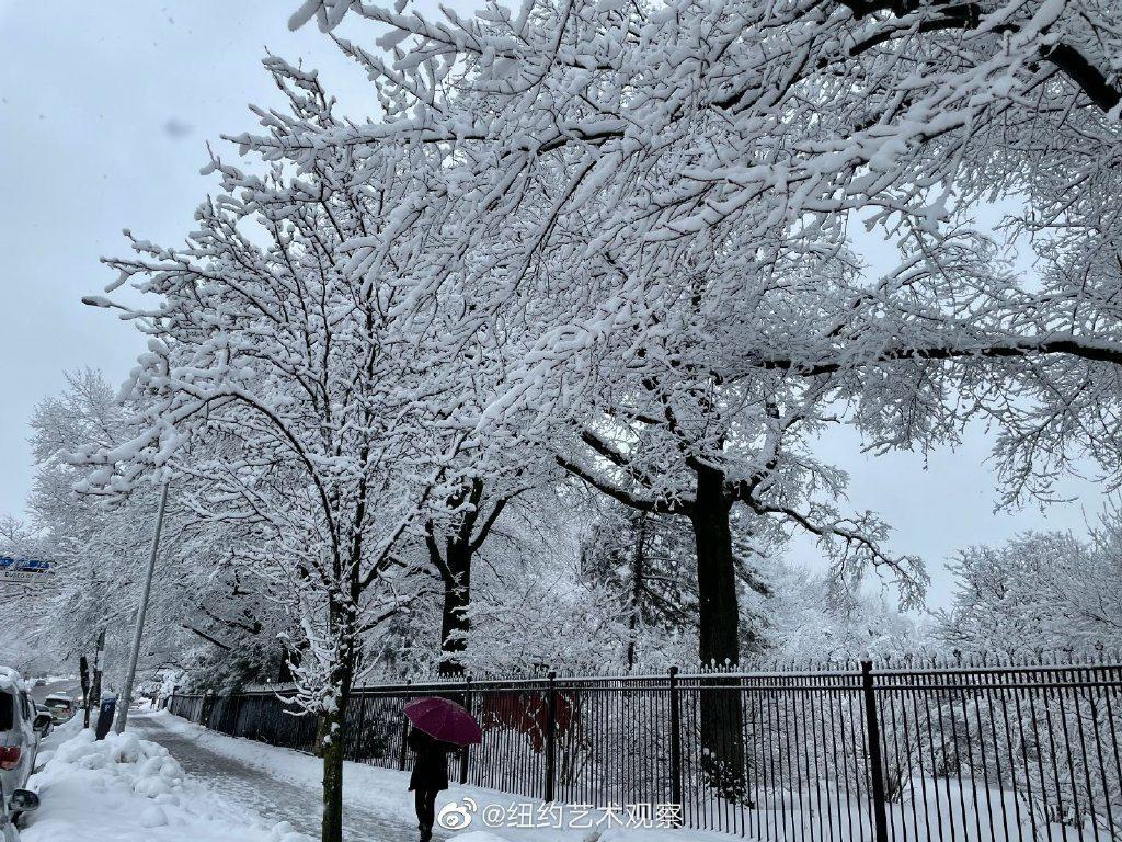 纽约法拉盛,千树万树雪花开_图1-18