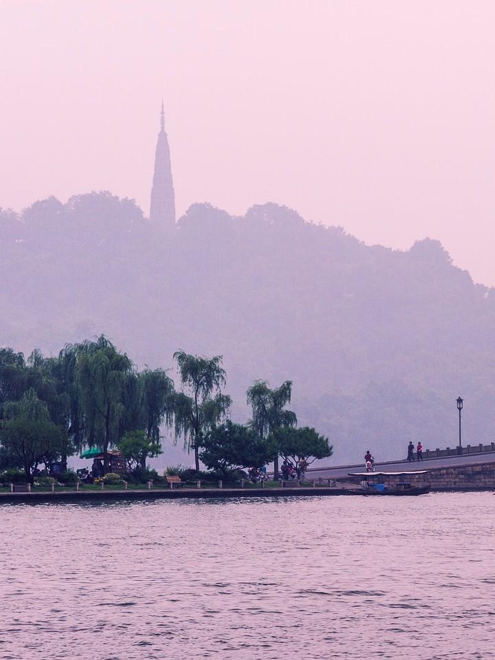 杭州西湖,荷花轻舟柳树_图1-11