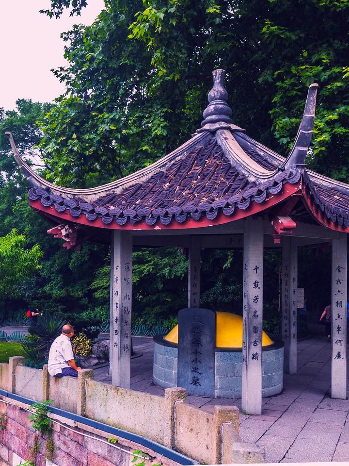 杭州西湖,荷花轻舟柳树_图1-5