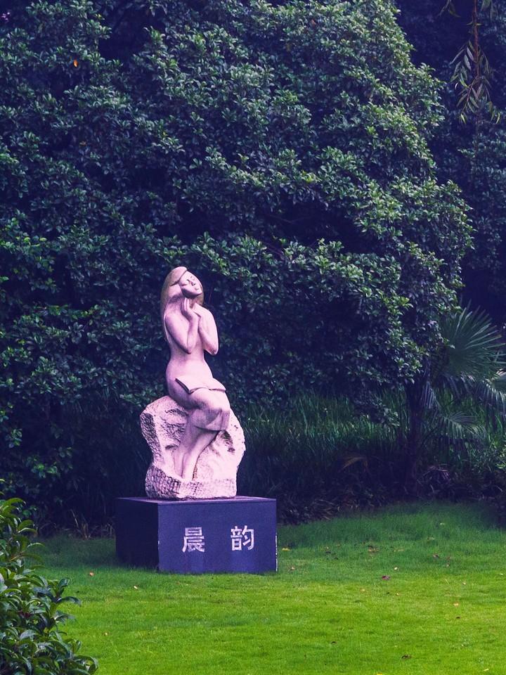 杭州西湖,荷花轻舟柳树_图1-6