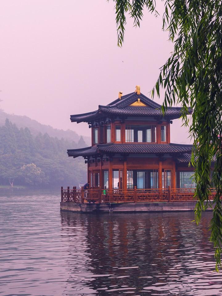 杭州西湖,荷花轻舟柳树_图1-13