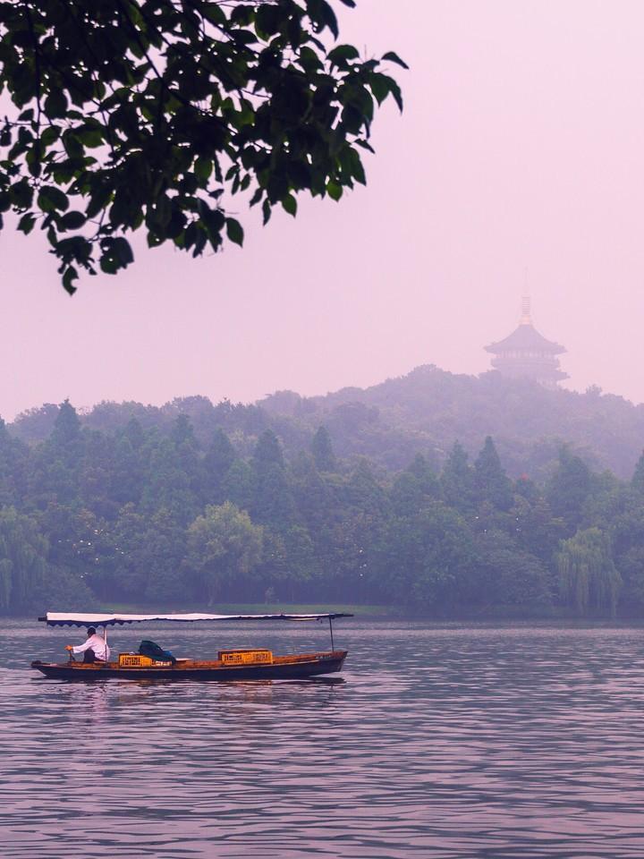 杭州西湖,荷花轻舟柳树_图1-14