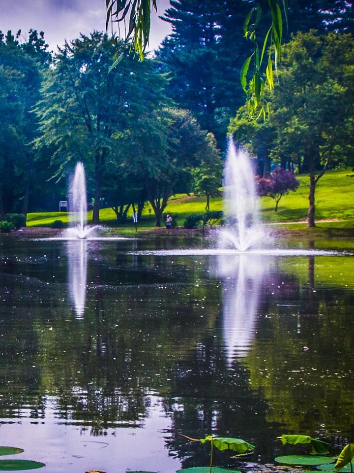滨州Willows park,湖中喷泉_图1-1