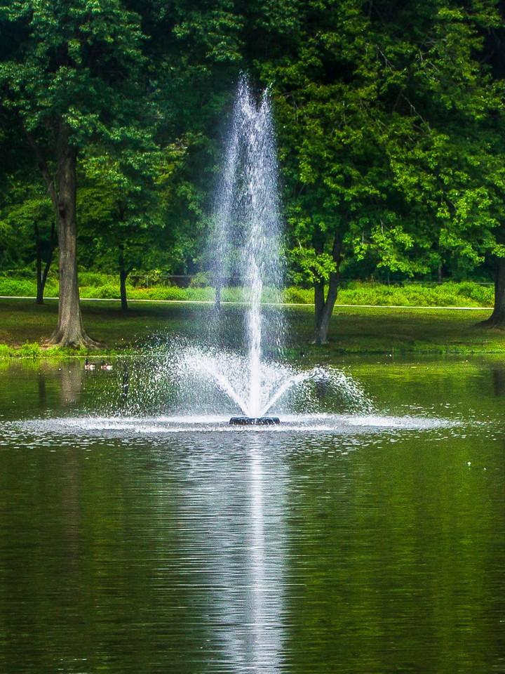 滨州Willows park,湖中喷泉_图1-4