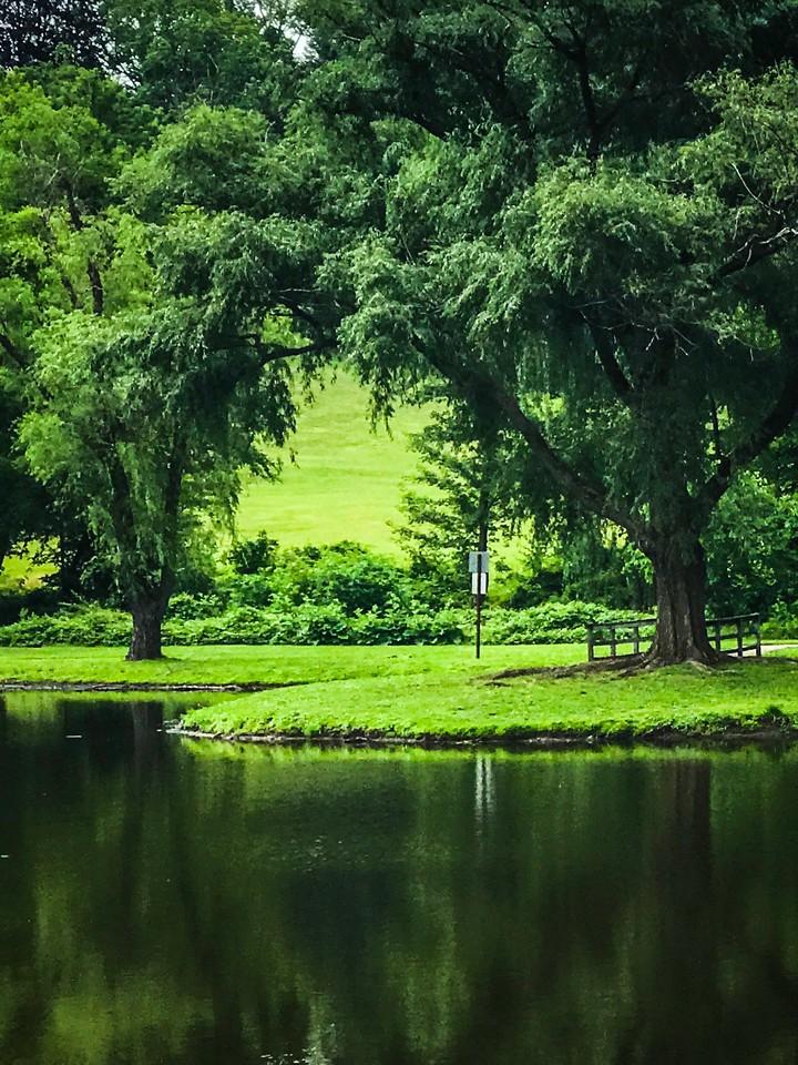 滨州Willows park,湖中喷泉_图1-12