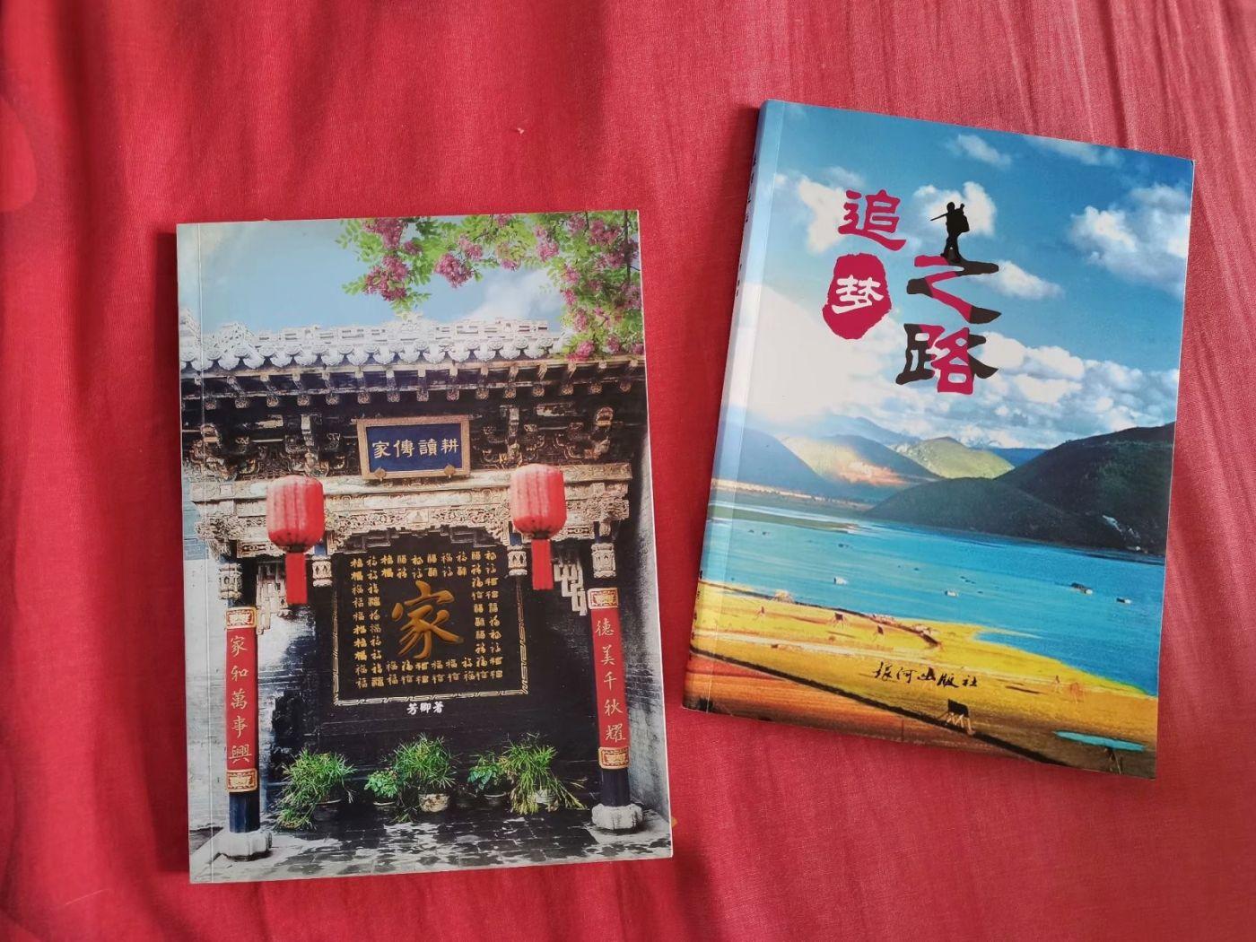 李婶儿的两本长篇小说《家》和《追梦之路》_图1-1
