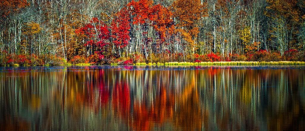宾州 French Creek State Park,水中秋色_图1-1