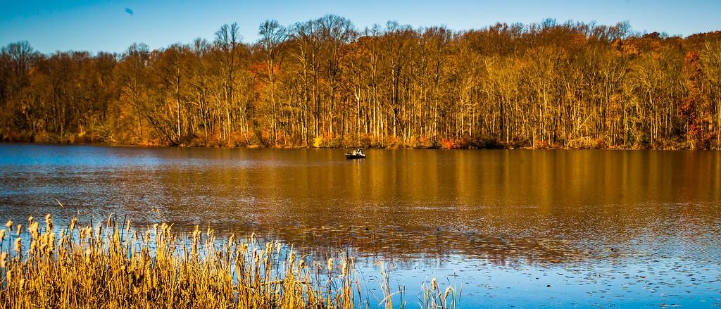 宾州 French Creek State Park,水中秋色_图1-2