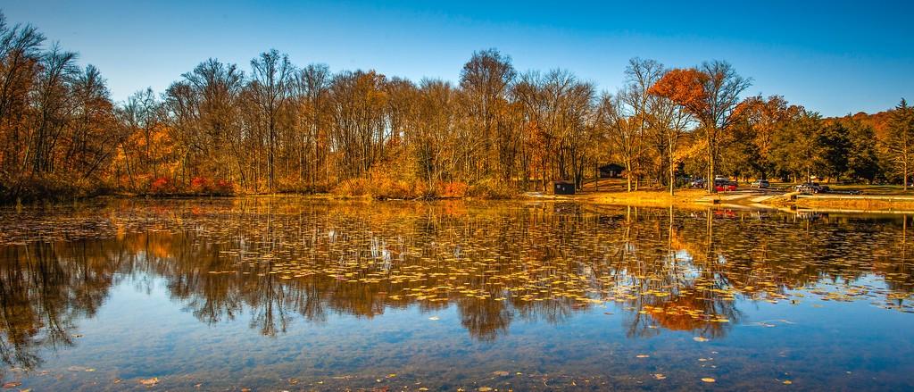 宾州 French Creek State Park,水中秋色_图1-8