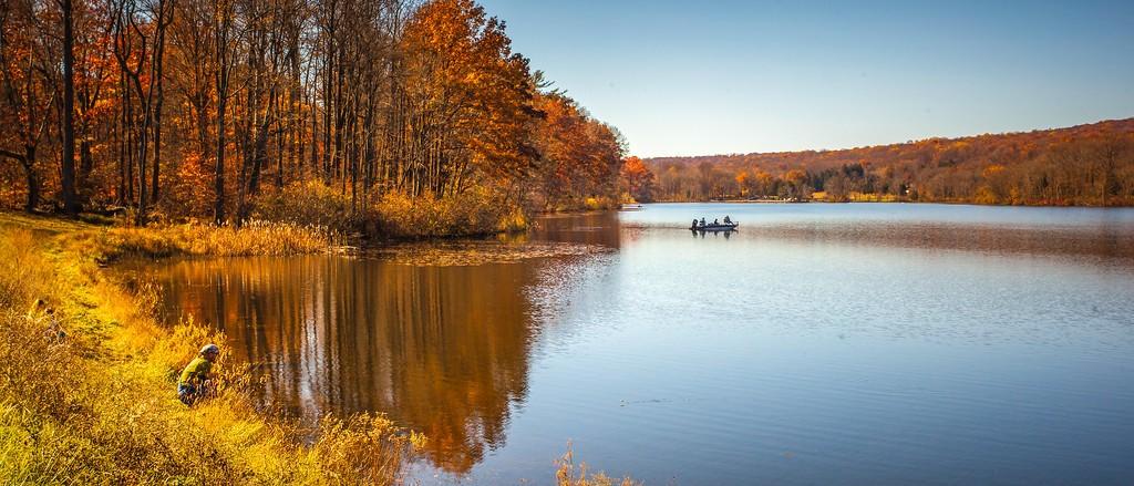 宾州 French Creek State Park,水中秋色_图1-10