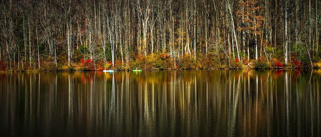 宾州 French Creek State Park,水中秋色_图1-9