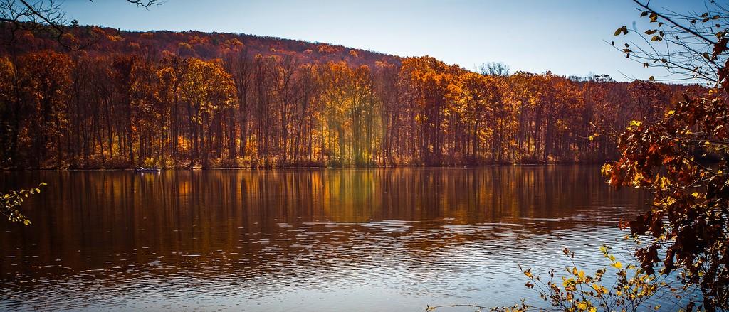 宾州 French Creek State Park,水中秋色_图1-13