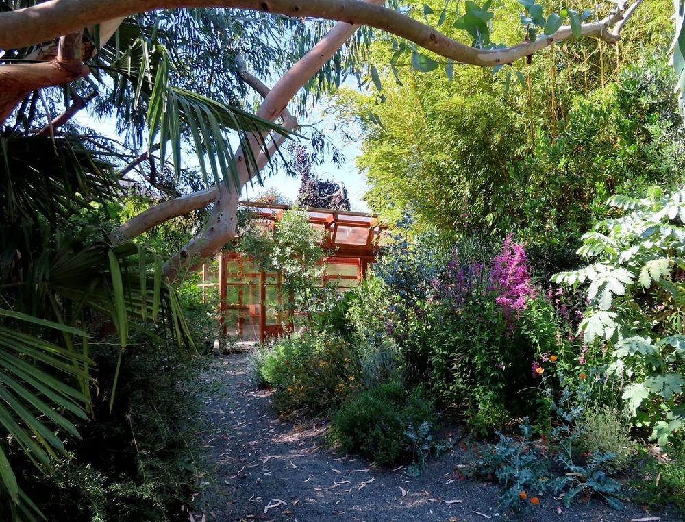 蜂鸟花园在八月_图1-21