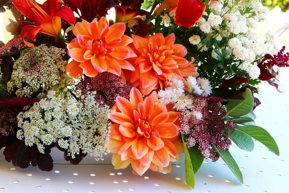 花束找灵感_图1-5