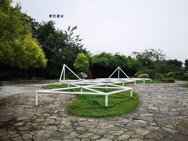 【青竹凌云】风香绿韵(原创摄影)_图1-2