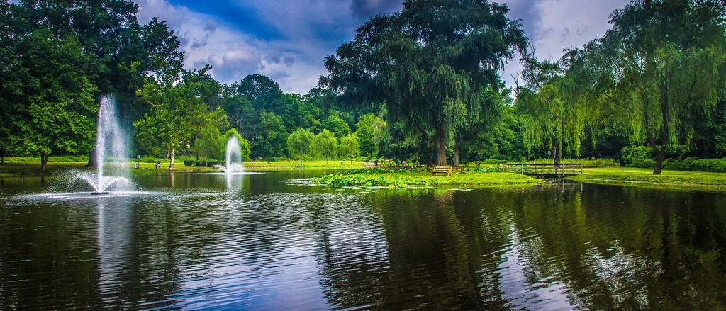 滨州Willows park,享受生活_图1-8