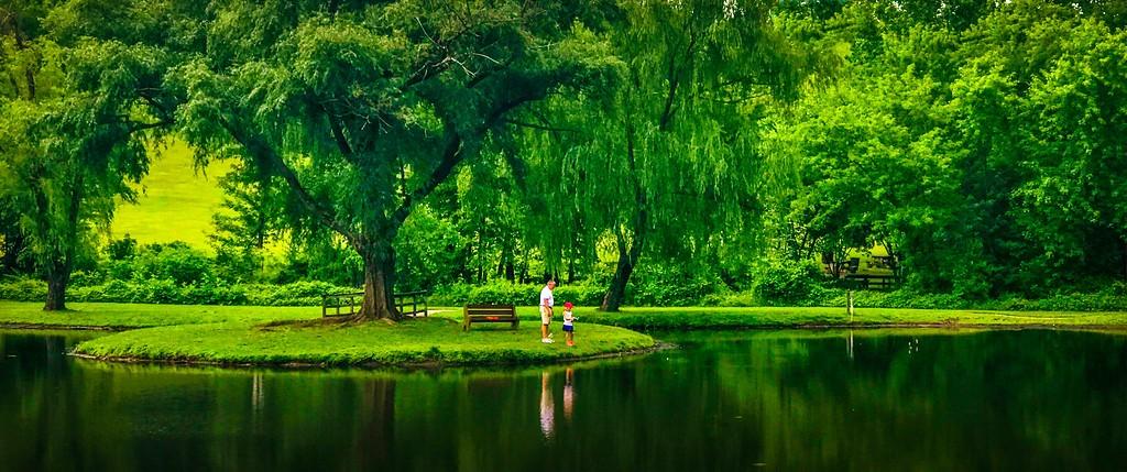 滨州Willows park,享受生活_图1-5